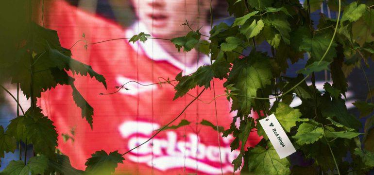 """Red Hops"" by Carlsberg"