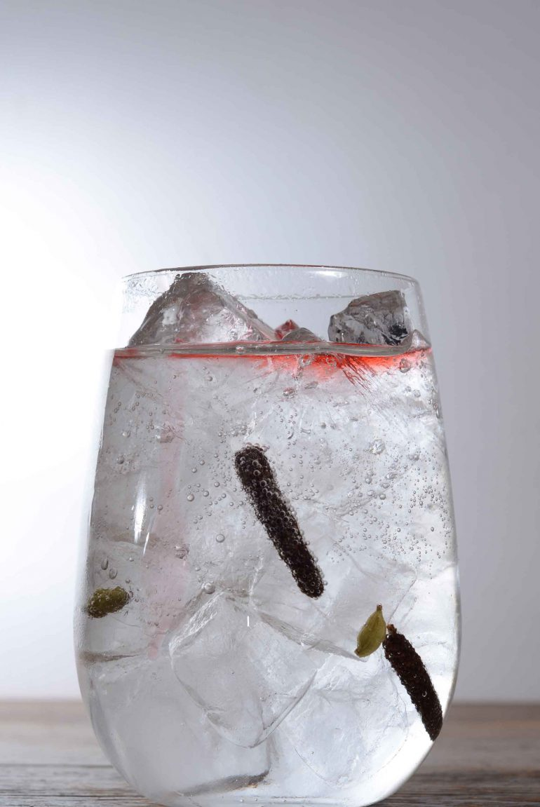 Spiced Gin & Tonic Cocktail