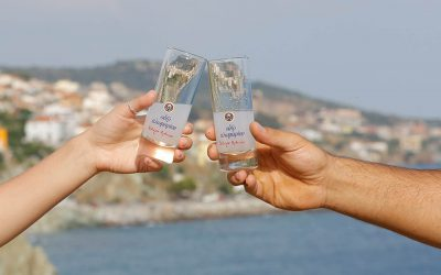 clinking glasses of ouzo plomari